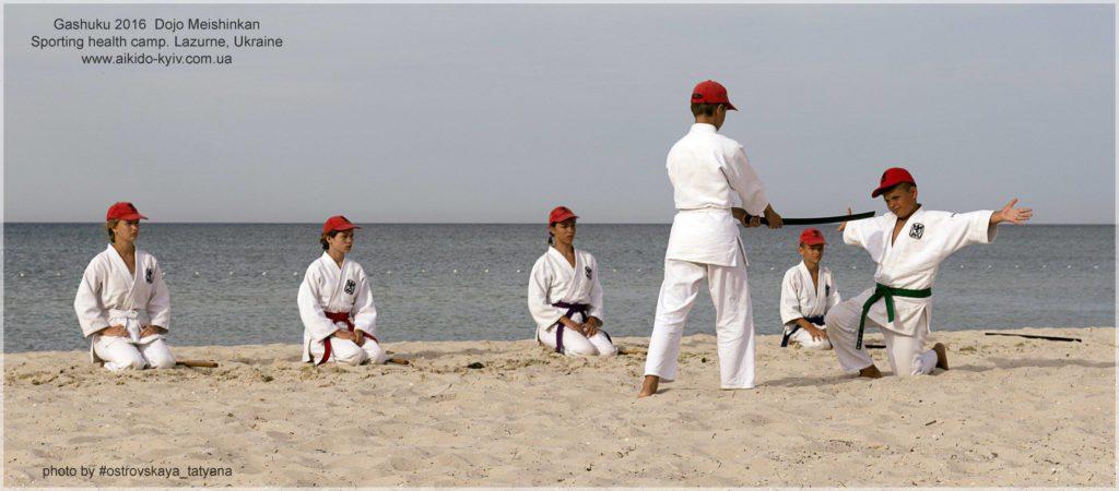 aikido_yoshinkan_pozniaky-576