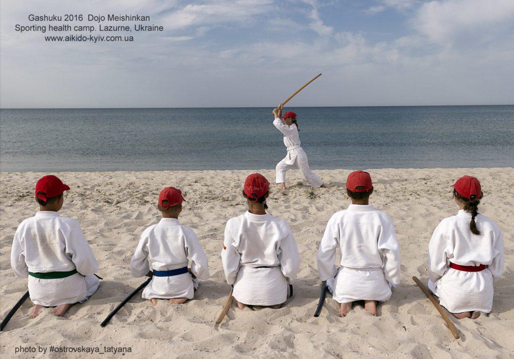 aikido_yoshinkan_pozniaky-577
