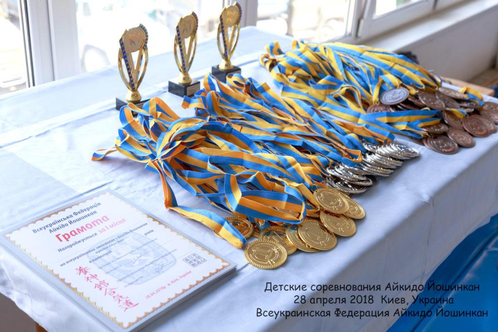 айкидо спортивная секция зал ребенок позняки киев